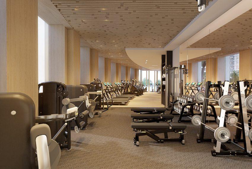 aurelia-gym